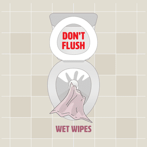Flushable Wipes - To Flush or Not To Flush?