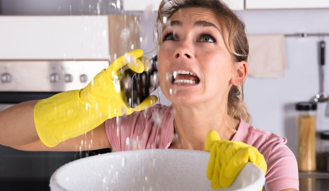 What to Do If You Suspect a Water Leak