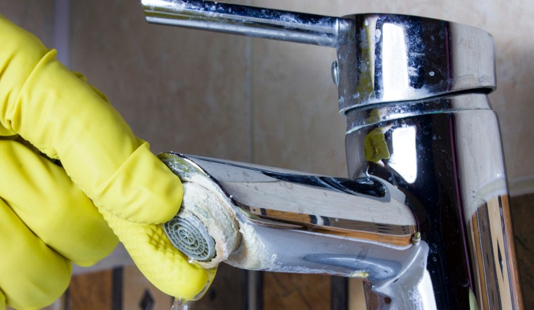 Best Tip! How to Remove Limescale at Home